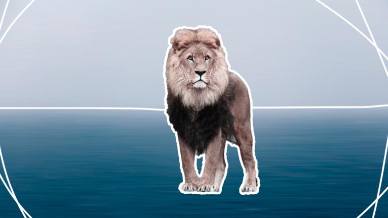capa-blog-rei-leão