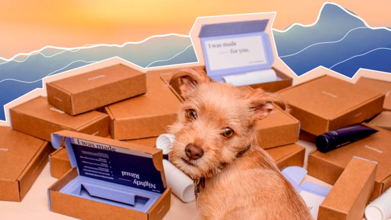 imagem de capa blog com um cachorrinho e várias caixas ao fundo representando o título comprei o que não devia e agora?