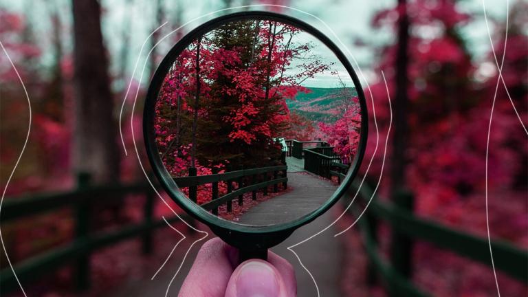 imagem capa blog com uma mão segurando uma lupa, onde o que se está vendo dentro da lupa está totalmente nítido e o que se está vendo ao redor da lupa está totalmente embaçado. A imagem que está sendo vista é ma floresta com árvores em tons quentes. Esta imagem é uma representação da vida do colaborador e como o RH pode ajudar.