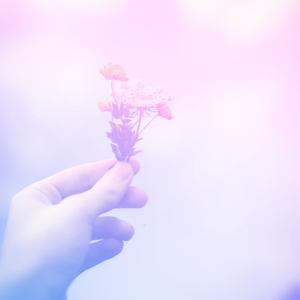 imagem de uma mão segurando um ramo de flor representando a saúde emocional
